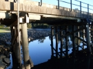 bellingen-morning-bridge-aug-2008-6