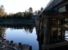 bellingen-morning-bridge-aug-2008-9
