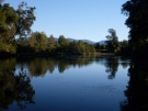bellingen-morning-river-aug-2008-14