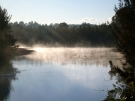 bellingen-morning-river-aug-2008-7