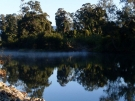 bellingen-morning-river-aug-2008-9