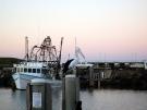 coffs-harbour-june-08-51