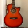 esp-ltd-semi-acoustic-guitar
