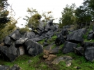 Abbey Caves area, Northland, New Zealand, 2010